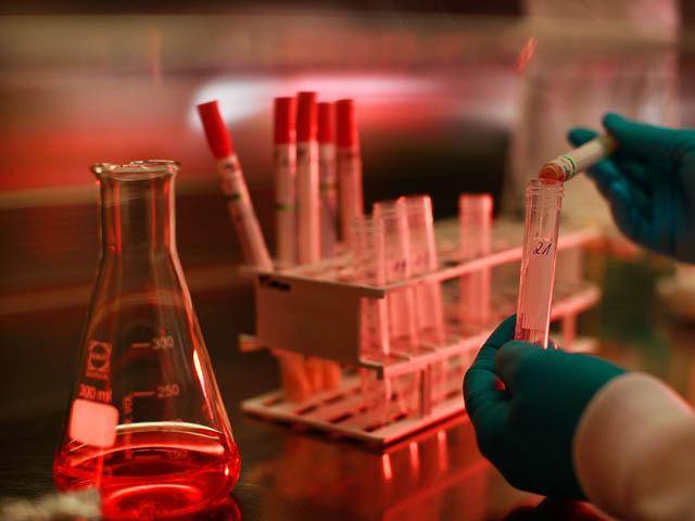 Каждый желающий может пройти обследование на ВИЧ, в том числе анонимно