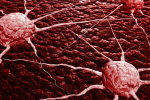 Что сделать чтобы иммунитет научился отличать здоровые клетки от раковых