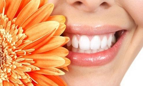 Услуги стоматологов