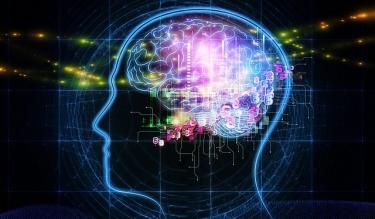 Мозг человека начинает стареть после 40 лет