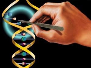 Генотерапия поможет в борьбе с ВИЧ-инфекцией