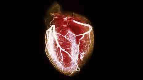 Как стресс становится причиной повреждения сердца