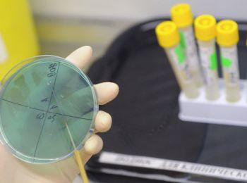 В Европе зафиксирована вспышка опасной инфекции