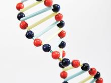 Исследователи обнаружили ген, связанный с сепсисом