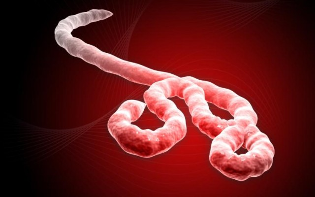 Эбола вернулась в Либерию