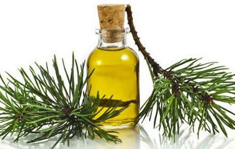 Пихтовое масло от гриппа и простуды: возьмите на заметку
