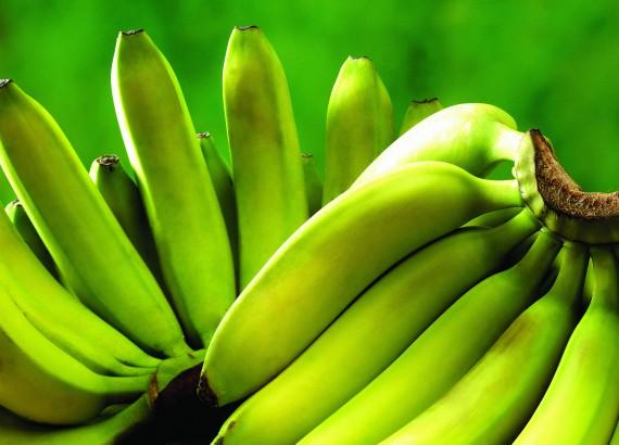 Россиян пугают бананами, «залитыми ВИЧ-инфицированной кровью».