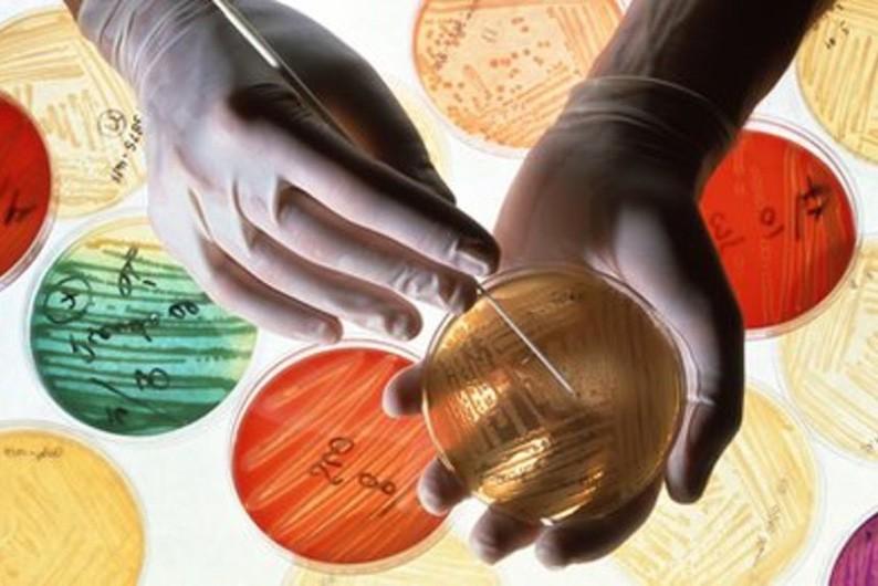 Мир терпит неудачу в борьбе с устойчивостью к антибиотикам