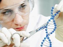 Изменение генов — новое оружие против ВИЧ-инфекции