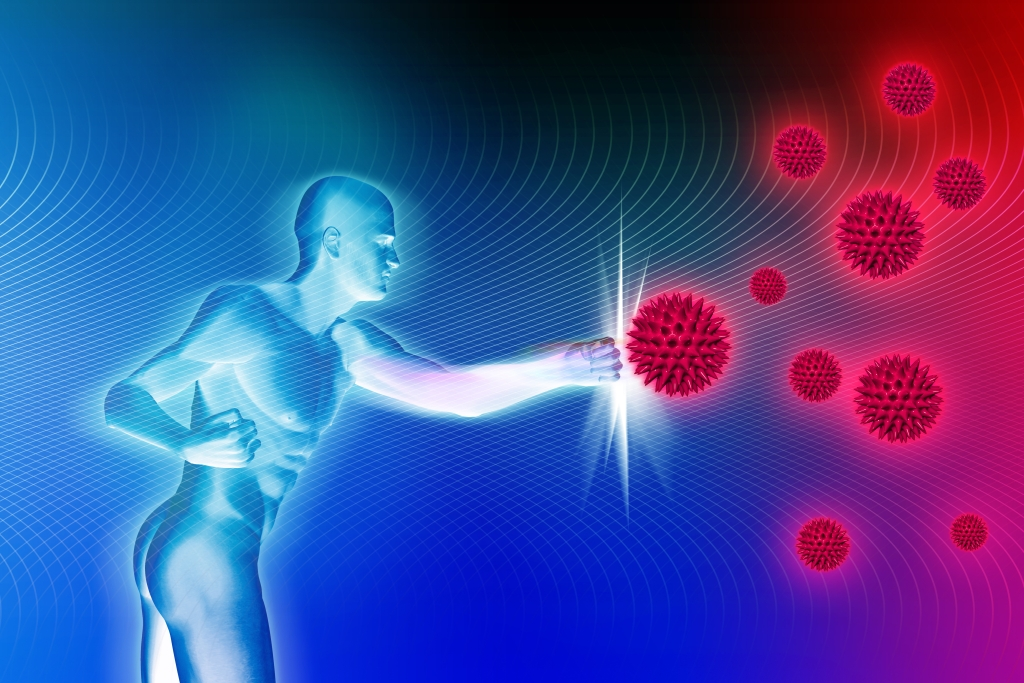 Ночью иммунитет сильнее