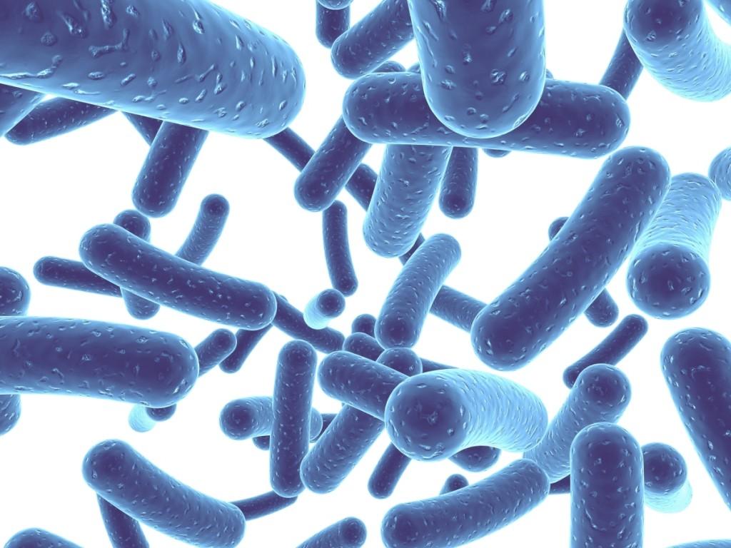 ВИЧ инфицированные люди могут извлечь пользу из приема пробиотиков