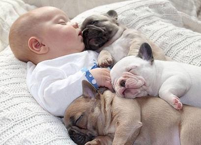 Полезны ли для здоровья детей домашние животные?