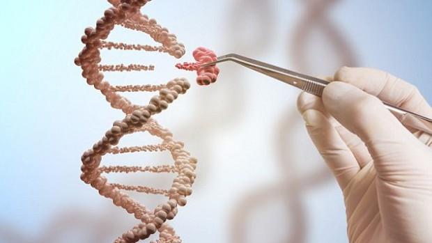 Ученые впервые вылечили животных от ВИЧ