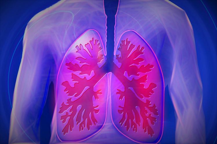 Легкие нужны не только для того, чтобы дышать