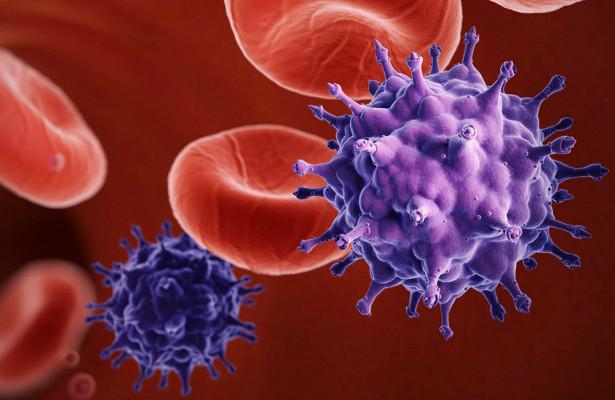Учёные научились удалять ВИЧ у животных