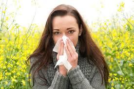Лучшие советы от сенной лихорадки