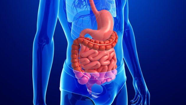Инфекции могут быть смертельными для больных почечной недостаточностью