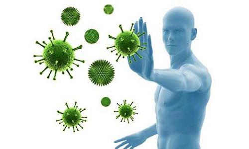 Секрет эффективность иммунитета человека раскрыт