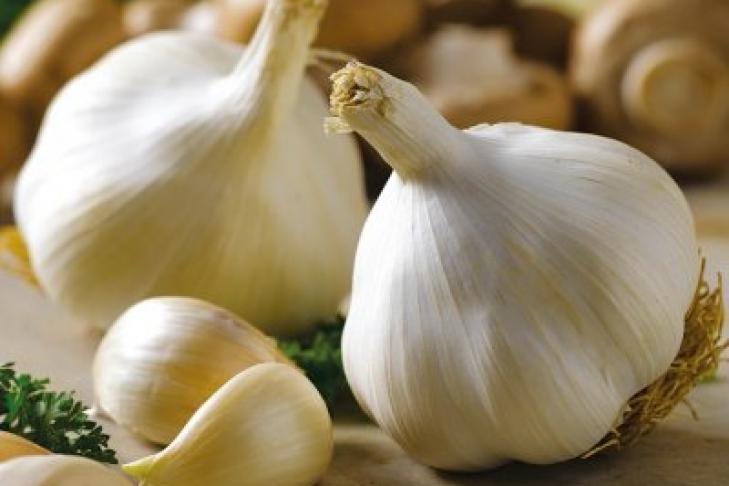 Ученые: Чеснок защищает от сердечных заболеваний и укрепляет иммунитет