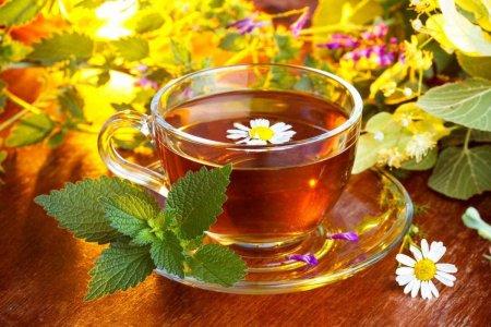Зеленый, черный, белый, красный. Может ли чай защитить от болезней?