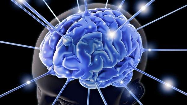 Препарат, который омолаживает мозг и восстанавливает память? Новое открытие ученых