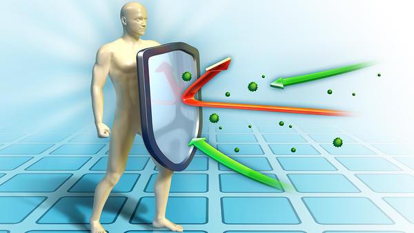 «Защитный бастион»: как работает иммунитет человека