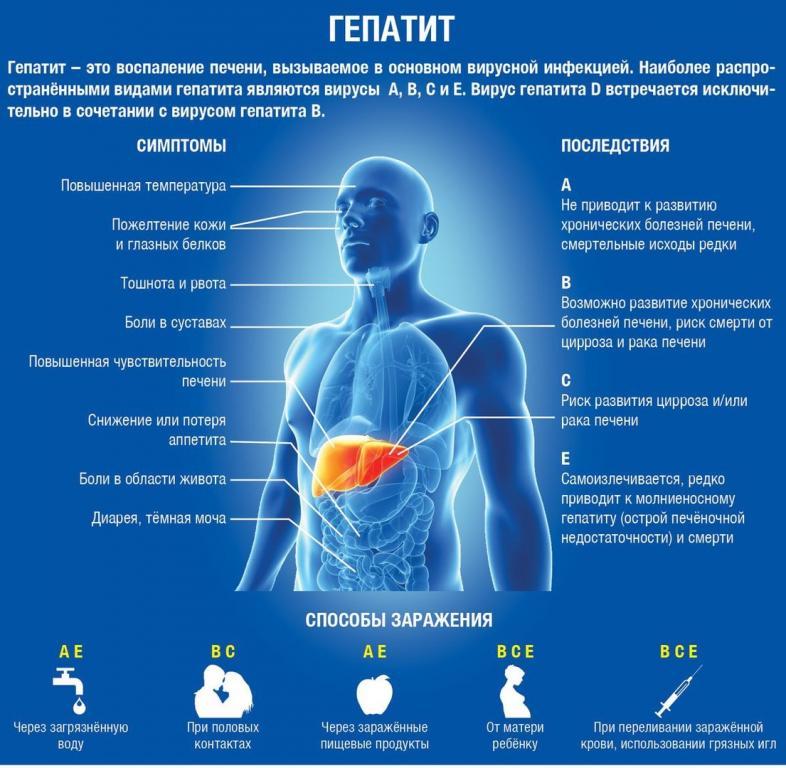 Гепатит — что это за болезнь, и как она появляется