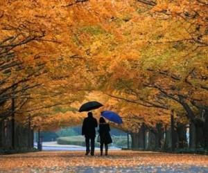 Как избежать обострения хронических заболеваний осенью