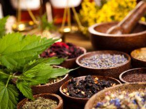 Лекарственные травы при гепатите: 20 сборов в помощь печени