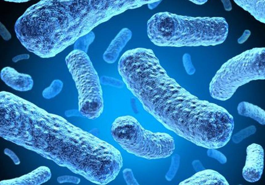 Американские ученые создали сенсор, выявляющий людей с инфекцией