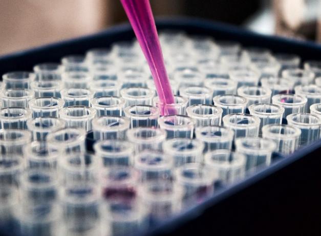 Генетики поняли, как группа крови влияет на течение COVID-19 и риск заражения