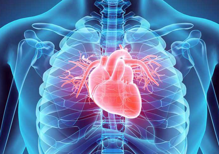 У переболевших COVID-19 обнаружили коронавирус в сердечной мышце