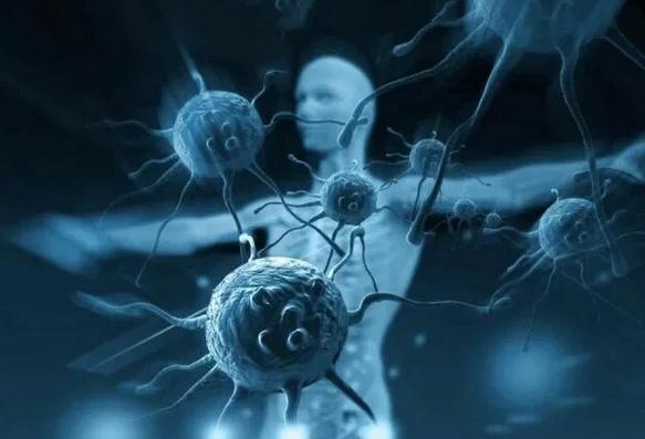 Названа группа крови с самым сильным иммунитетом