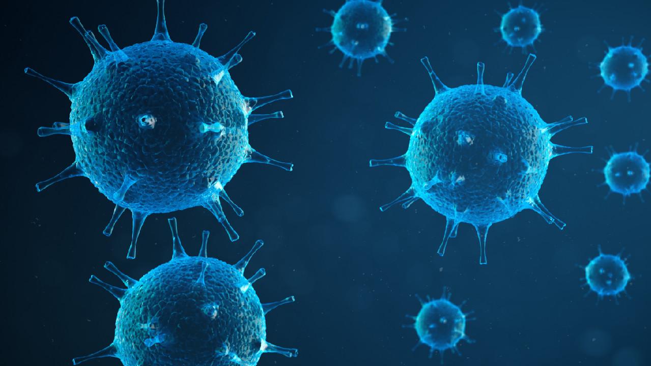 Старение и хронические вирусные инфекции оказывают схожее влияние на иммунитет