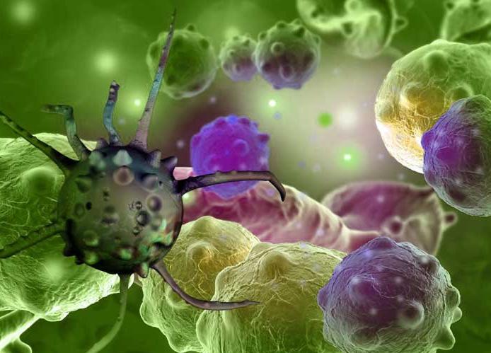 Вирусные инфекции действуют на организм как старение