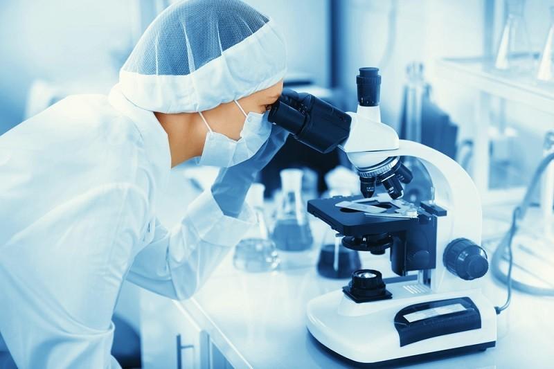 Ученые: популярность на пользу иммунитету